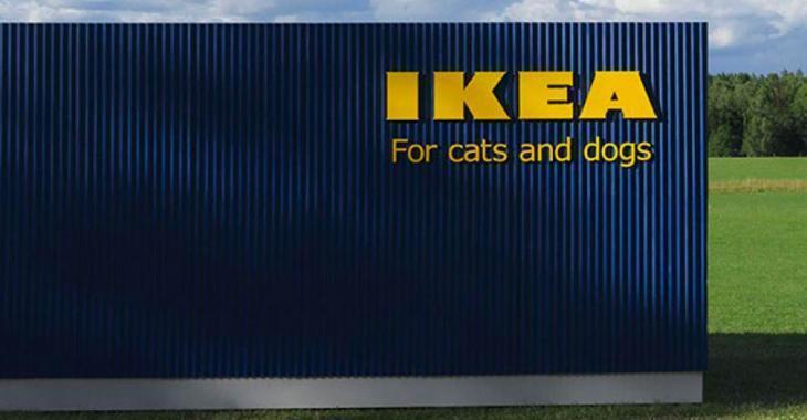 IKEA lance une ligne de meubles pour les chats et les chiens et les amoureux des animaux se réjouissent.