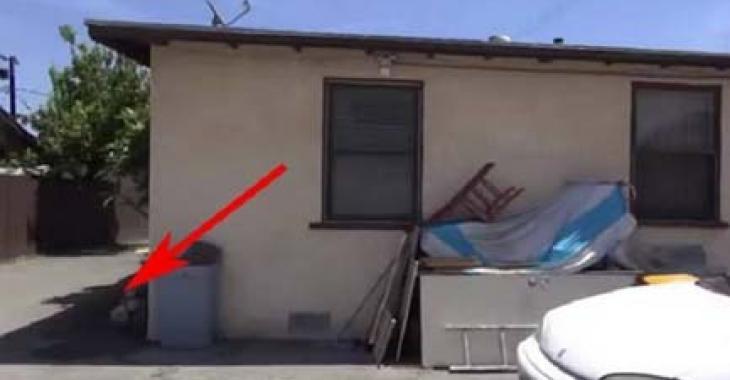Après sa mort, ses héritiers vident la maison,  puis un an plus tard, les voisins aperçoivent quelque chose de bizarre bouger dans le garage!