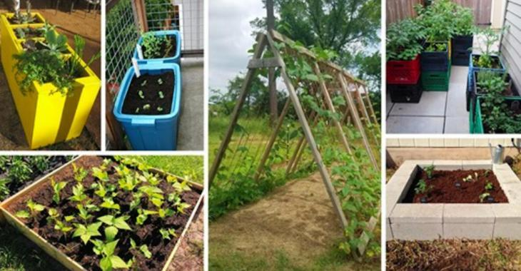 13 installations de jardins surélevés que vous pouvez fabriquer à moindre coût